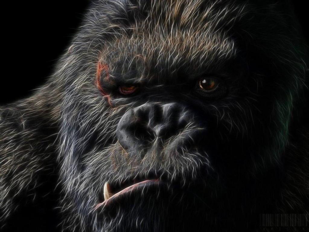 Kong by xmilek