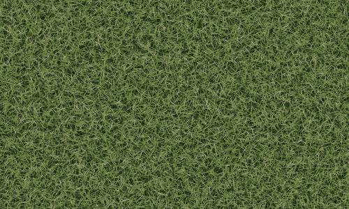 3d Grass Texture with Seamless Tiling